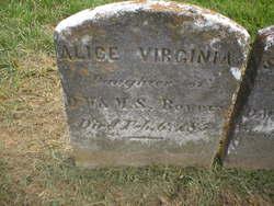 Alice Virginia Bowers