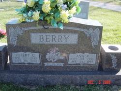 Ann P Berry
