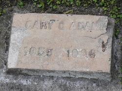 Gary G Adams