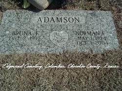 Norman E. Adamson