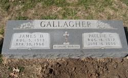Patricia Pauline C. <i>Bienek</i> Gallagher