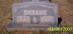 S. T. Leslie Carey