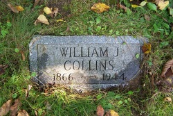 William J Collins