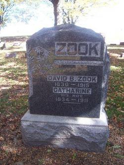 David B. Zook