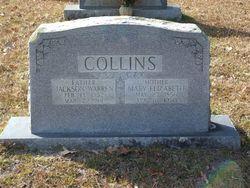 Jackson Warren Collins