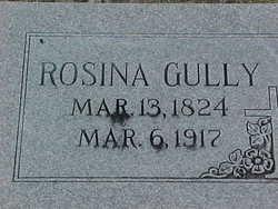 Rosina <i>Weber</i> Gully