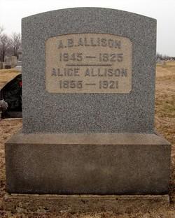 Alice <i>Brookes</i> Allison