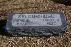Harry Hunter Seldomridge