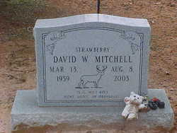 David Wendell Mitchell