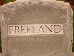 Donald E. Freeland