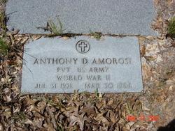 Anthony Dante Amorosi