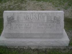 Davis Walton Bush