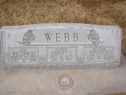 William H Webb