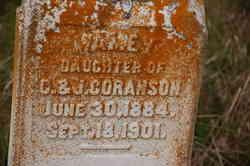 Mamey Coranson