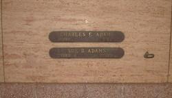 Sue D Adams