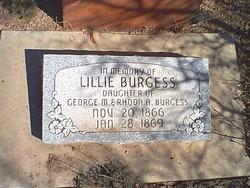 Lillie Burgess