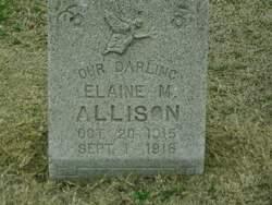 Elaine M. Allison