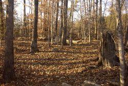 McDaniel-Dial Family Cemetery