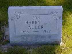 Harry Eldon Auler