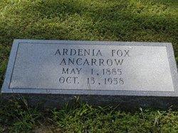 Ardenia <i>Fox</i> Ancarrow