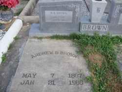 Andrew B. B. B Brown