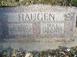 Andrea Haugen