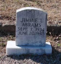 Jimmie L. Abrams