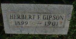 Herbert F Gipson
