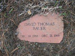 David Thomas Bauer