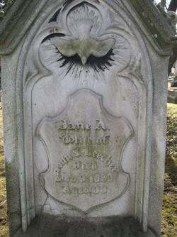 Jane A Beecher