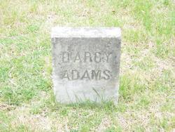 Darcy Adams