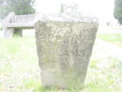 Bessie E. Adams