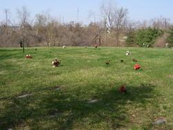 Pet Haven Cemetery
