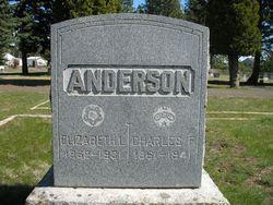 Elizabeth L <i>Dent</i> Anderson