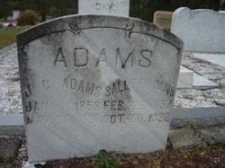 Sarah Elizabeth Sallie <i>Jones</i> Adams