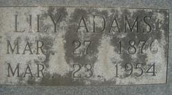 Lily Mae <i>Jackson</i> Digges Adams