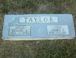 Louisa J Taylor