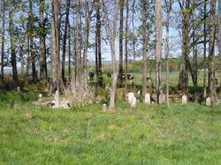 Gunn-Farris-Call Cemetery