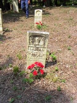 Laura L Allen