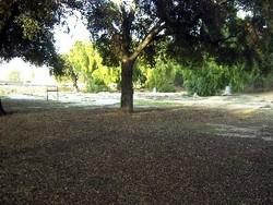 Spadra Cemetery
