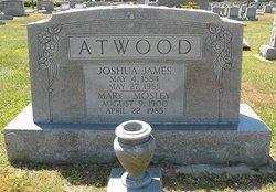 Mary Frances <i>Mosley</i> Atwood