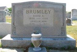 Ophelia Ann <i>Williams</i> Brumley