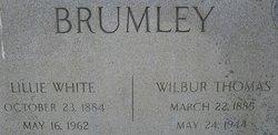 Mary Lillie <i>White</i> Brumley