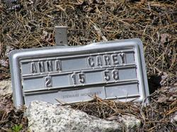 Anna L <i>Gallagos</i> Carey