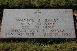Wayne J Batey