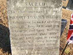 Pinkney Sylvanis Willson