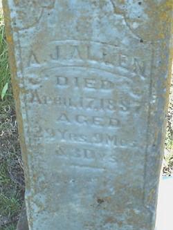 Alvin J Allen