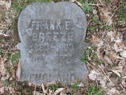 Frank F. Breeze
