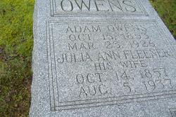 Julia Ann <i>Fleener</i> Owens