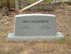 Curtis Hollingsworth